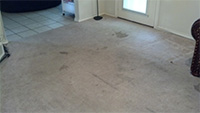 Stained up carpet before.
